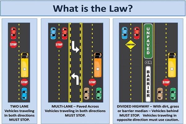 an infographic explaining Georgia's new school bus law