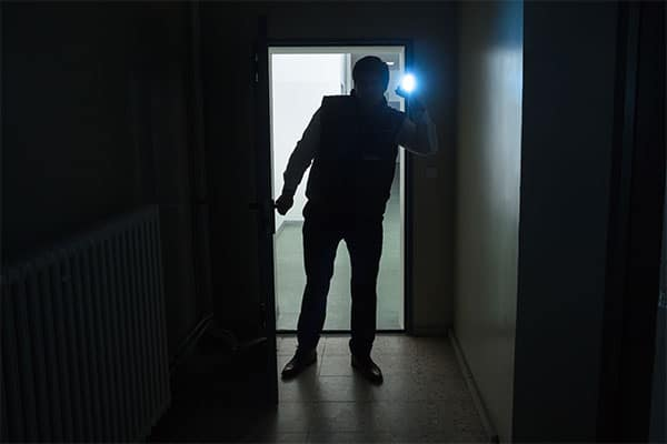 Stop Thief!!  Prevent a Burglary at Your Home