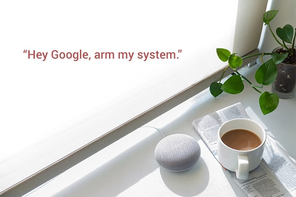 Control Your Security With Google Home and Alexa